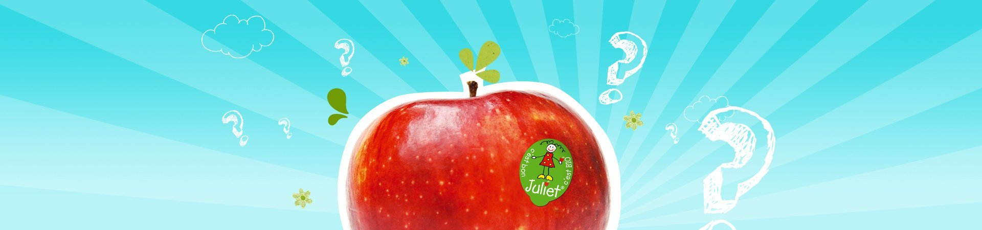 The beautiful story of a100% French Organic apple